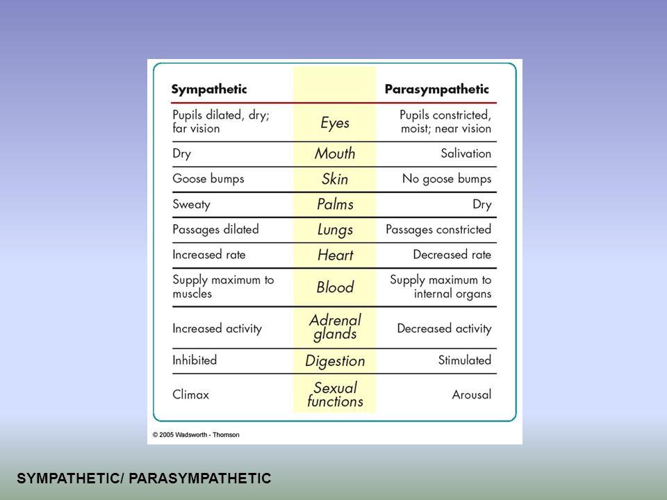 SYMPATHETIC/ PARASYMPATHETIC
