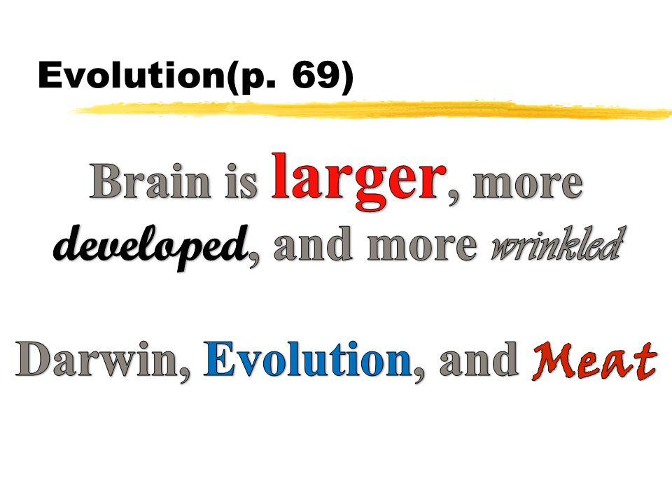 Evolution(p. 69)