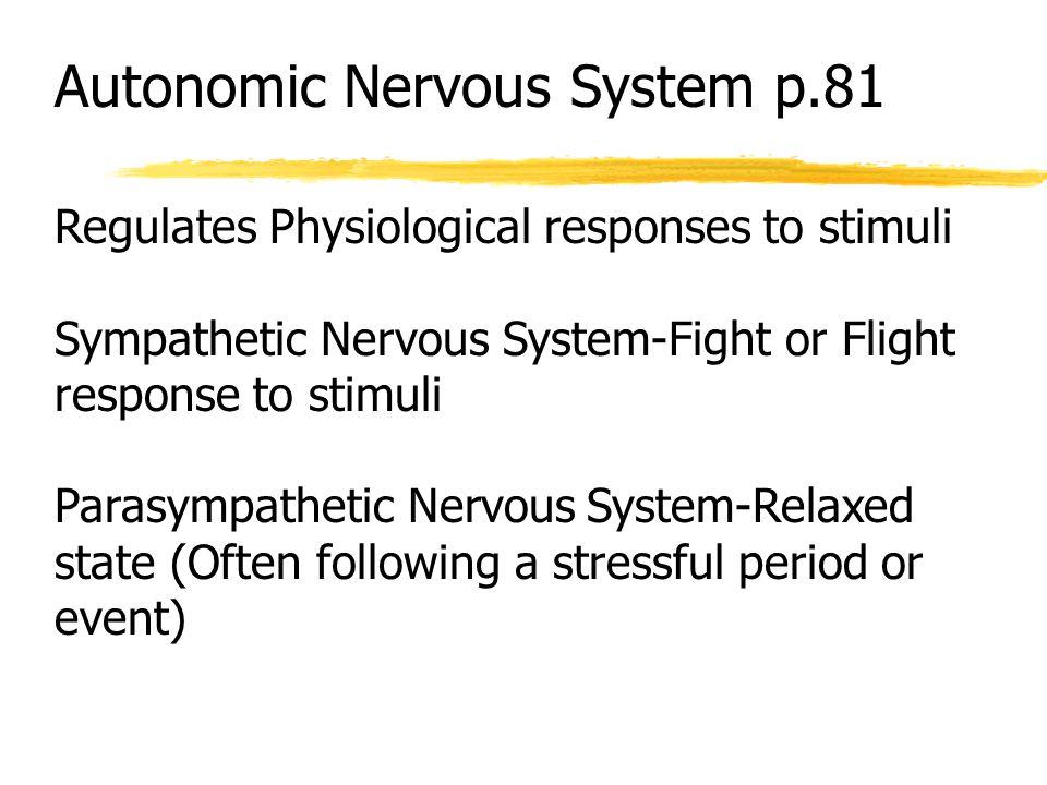 Autonomic Nervous System p.81 Regulates Physiological responses to stimuli Sympathetic Nervous System-Fight or Flight response to stimuli Parasympathe