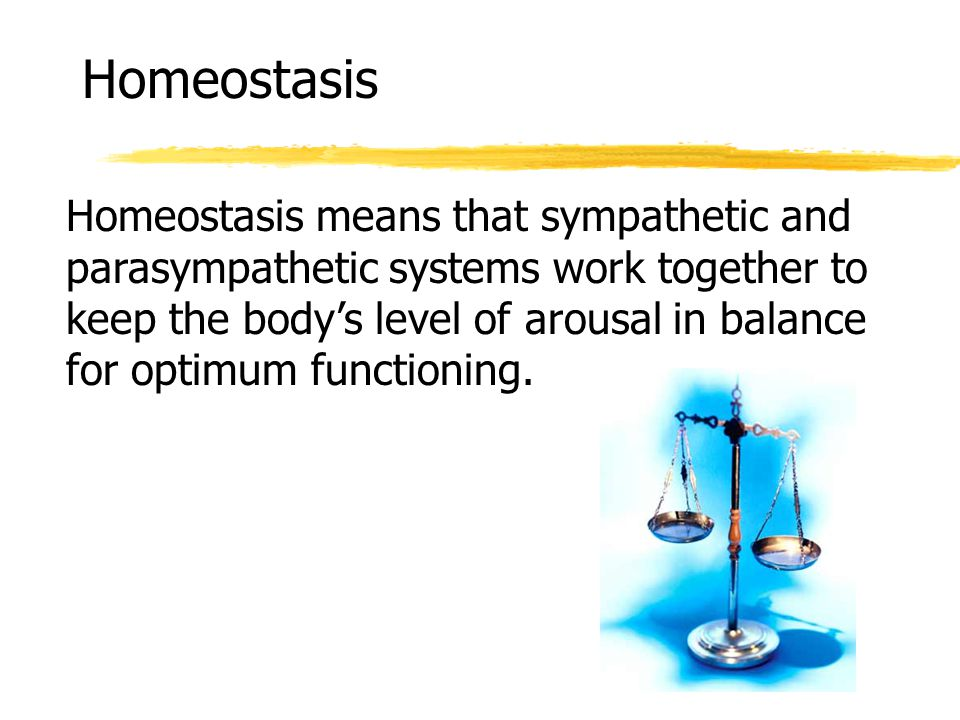 Homeostasis Homeostasis means that sympathetic and parasympathetic systems work together to keep the body's level of arousal in balance for optimum fu
