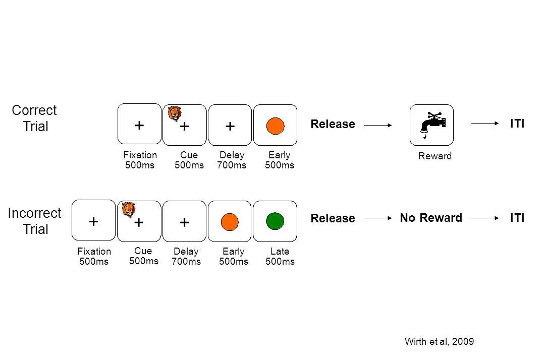 Reward Release No Reward ITI Correct Trial Incorrect Trial Wirth et al, 2009