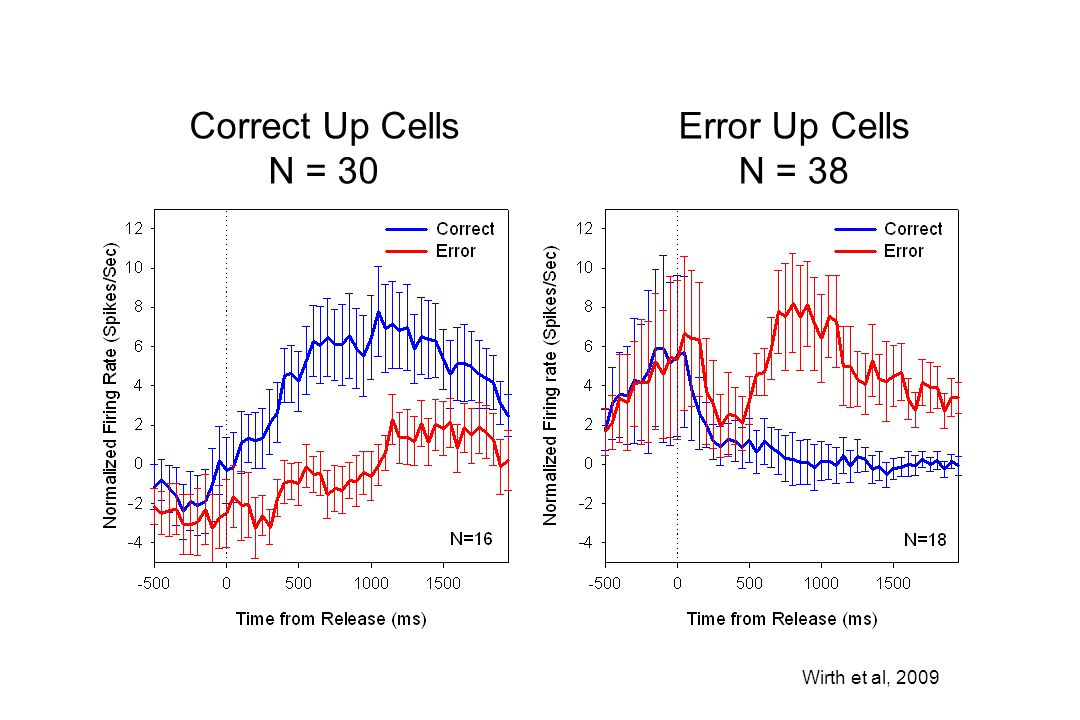 Correct Up Cells N = 30 Error Up Cells N = 38 Wirth et al, 2009