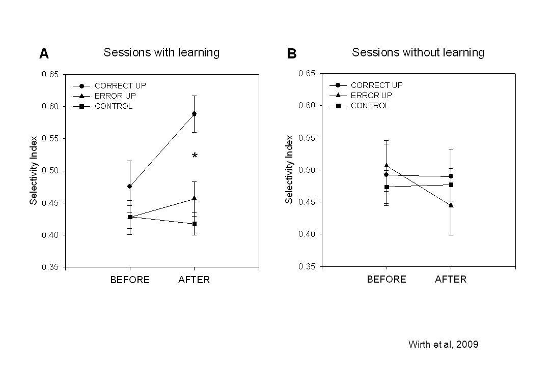 Wirth et al, 2009
