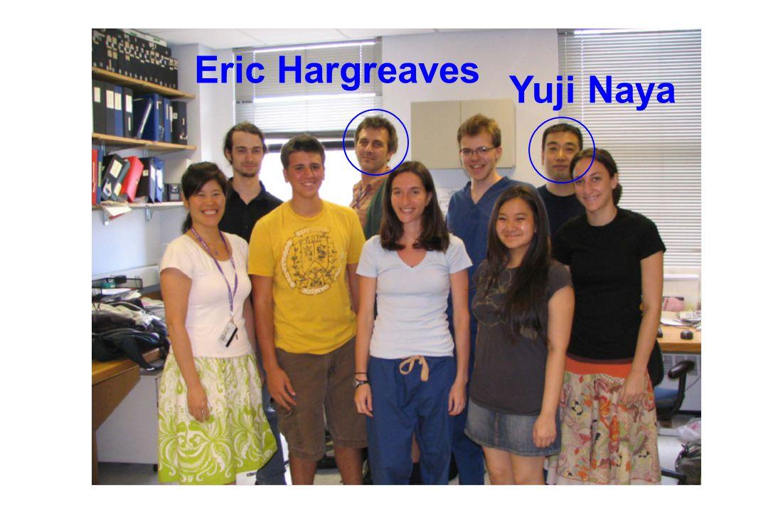 Eric Hargreaves Yuji Naya