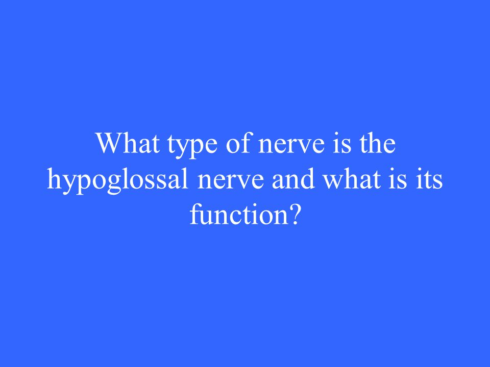 What type of nerve is the hypoglossal nerve and what is its function?
