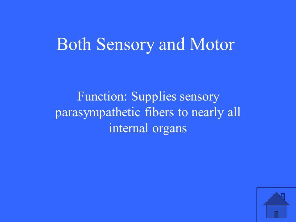 Both Sensory and Motor Function: Supplies sensory parasympathetic fibers to nearly all internal organs