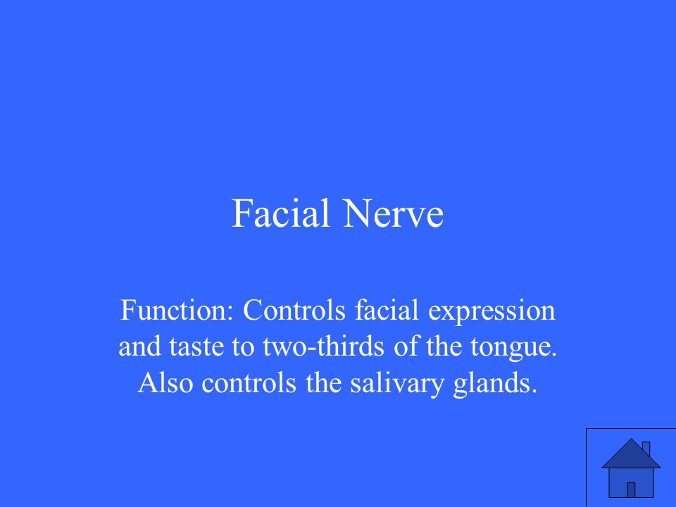 Facial Nerve Function: Controls facial expression and taste to two-thirds of the tongue.