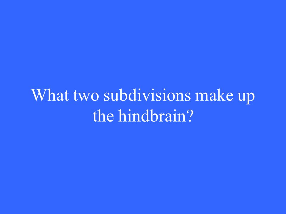 What two subdivisions make up the hindbrain?