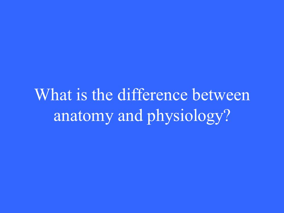 What is the difference between anatomy and physiology?