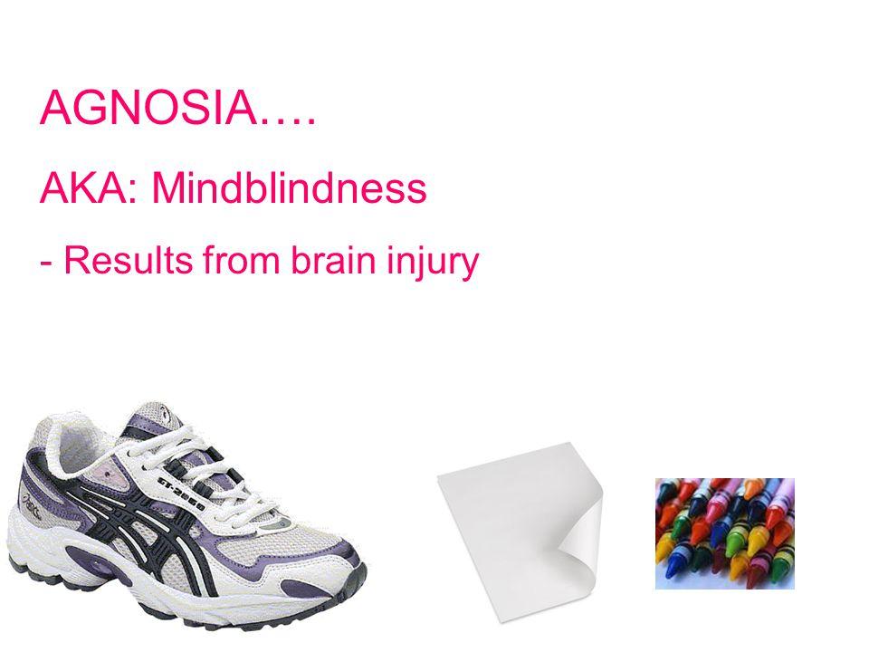 © West Educational Publishing AGNOSIA…. AKA: Mindblindness - Results from brain injury