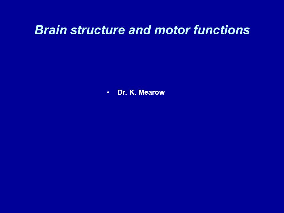 Brain structure and motor functions Dr. K. Mearow