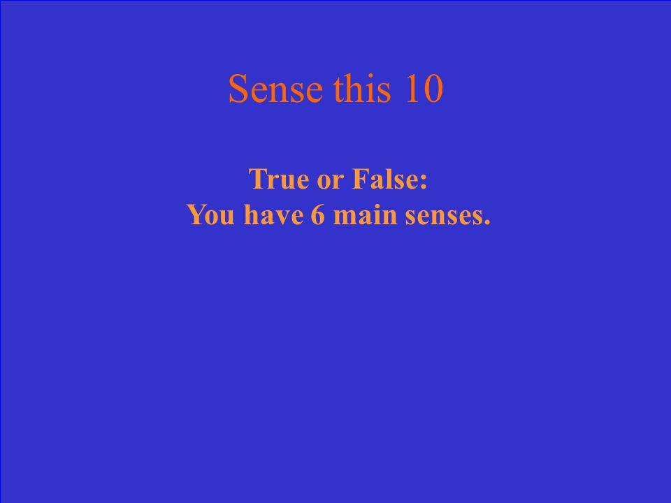 True or False: You have 6 main senses. Sense this 10