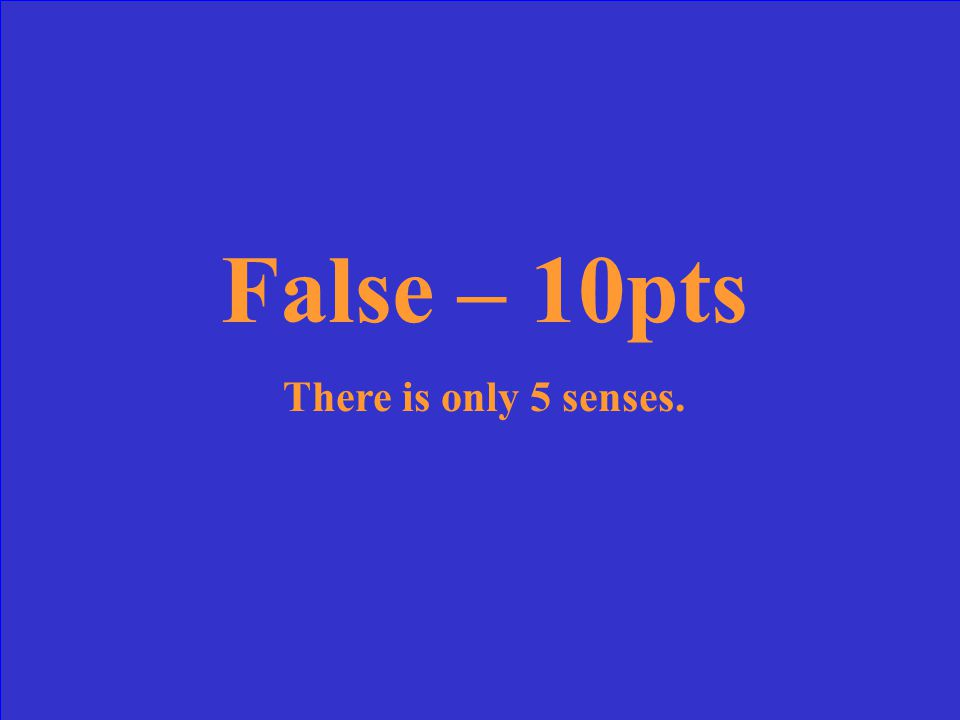 False – 10pts There is only 5 senses.