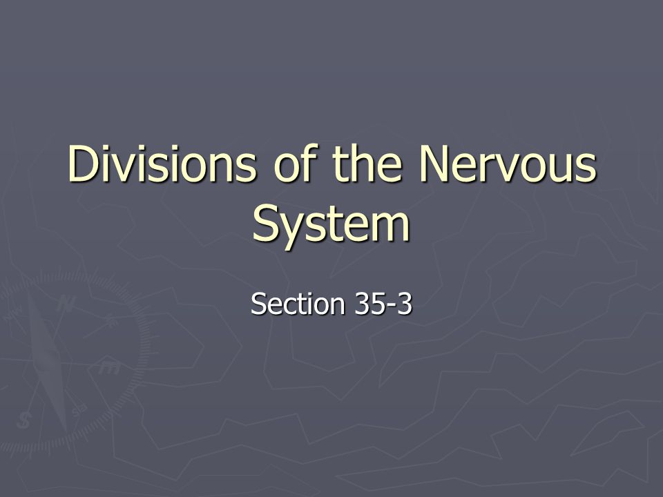 Divisions of the Nervous System Section 35-3