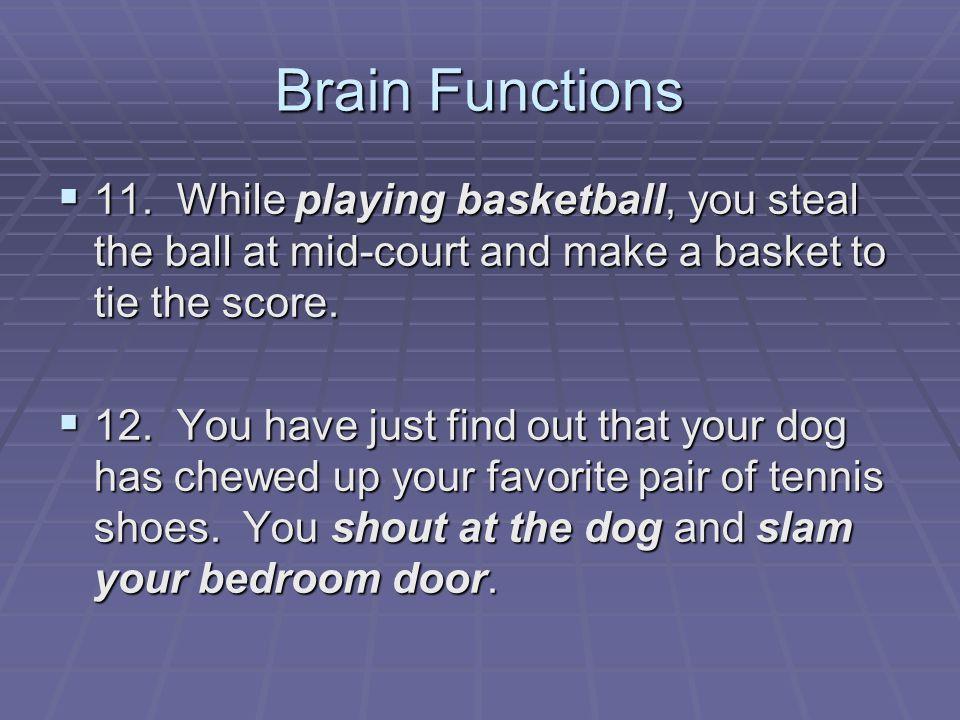 Brain Functions  11.