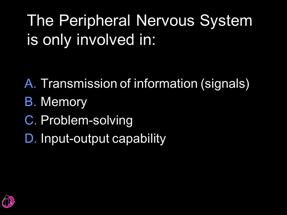 The Peripheral Nervous System is only involved in: A.Transmission of information (signals) B.Memory C.Problem-solving D.Input-output capability