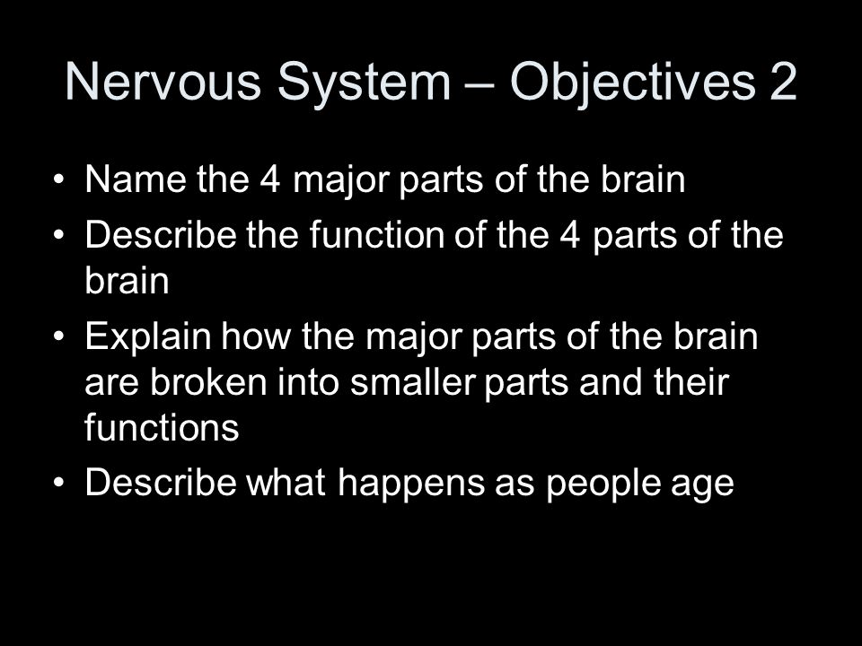 Nervous System – Objectives 2 Name the 4 major parts of the brain Describe the function of the 4 parts of the brain Explain how the major parts of the brain are broken into smaller parts and their functions Describe what happens as people age