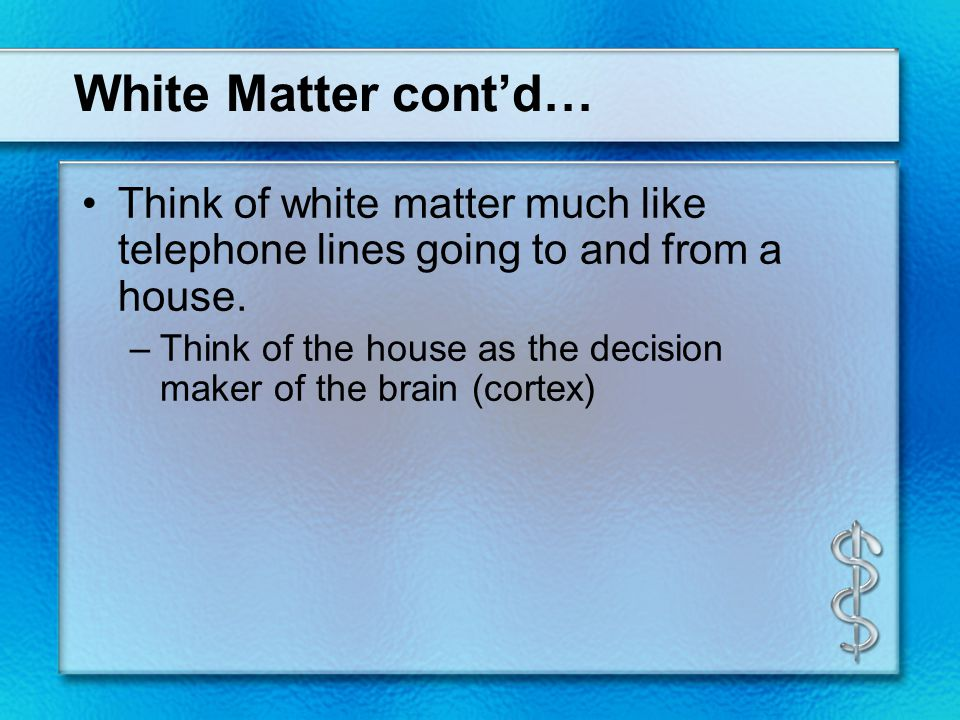 White Matter cont'd… Think of white matter much like telephone lines going to and from a house. –Think of the house as the decision maker of the brain