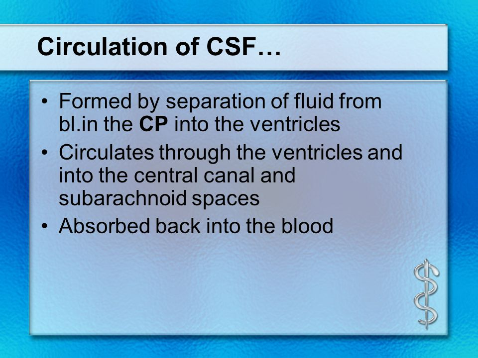 Circulation of CSF… Formed by separation of fluid from bl.in the CP into the ventricles Circulates through the ventricles and into the central canal a