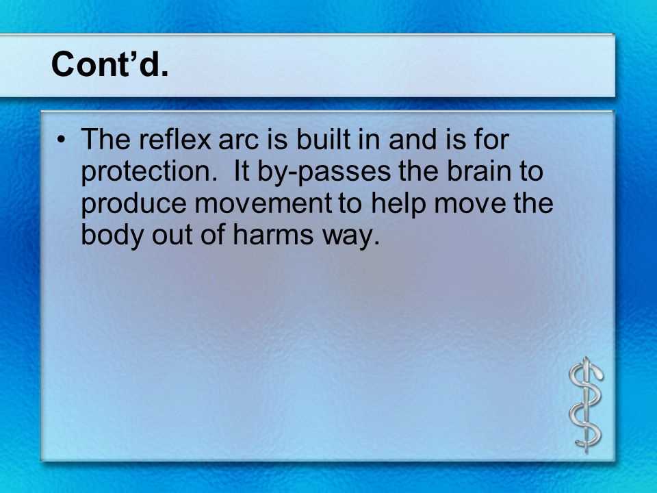 Cont'd. The reflex arc is built in and is for protection. It by-passes the brain to produce movement to help move the body out of harms way.