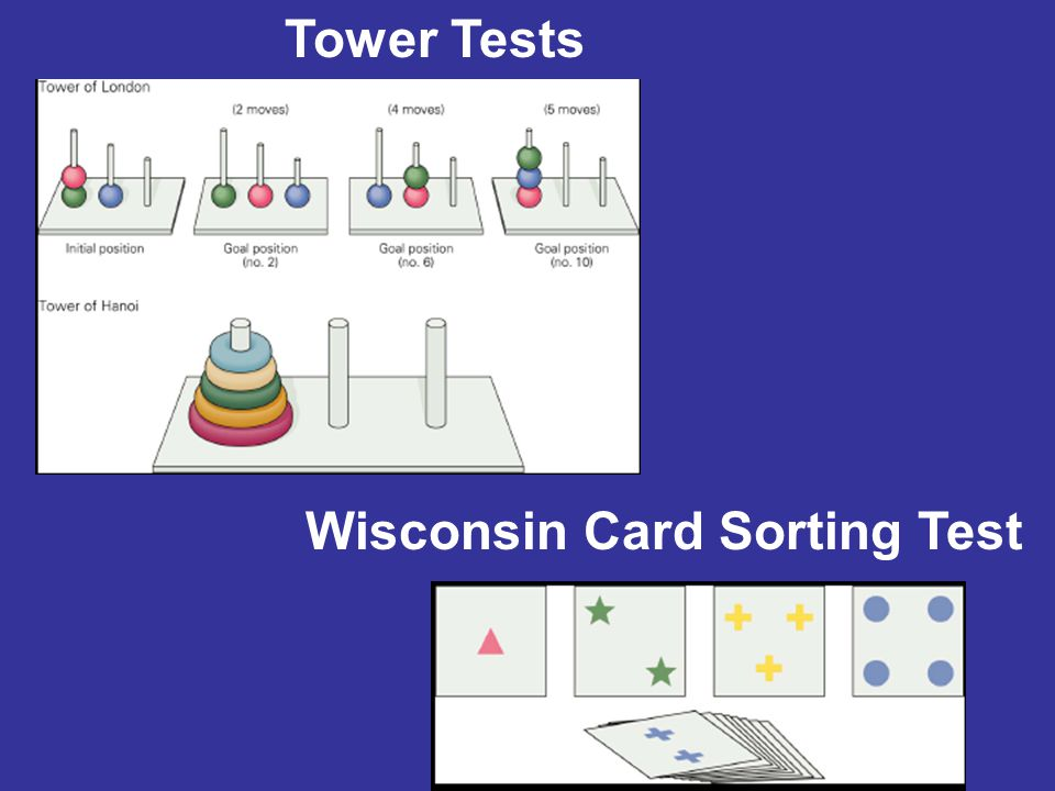 Wisconsin Card Sorting Test Tower Tests
