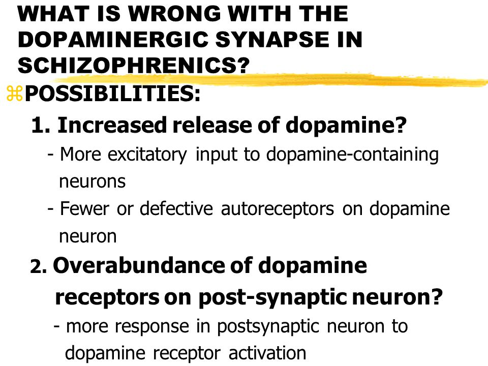 WHAT IS WRONG WITH THE DOPAMINERGIC SYNAPSE IN SCHIZOPHRENICS.