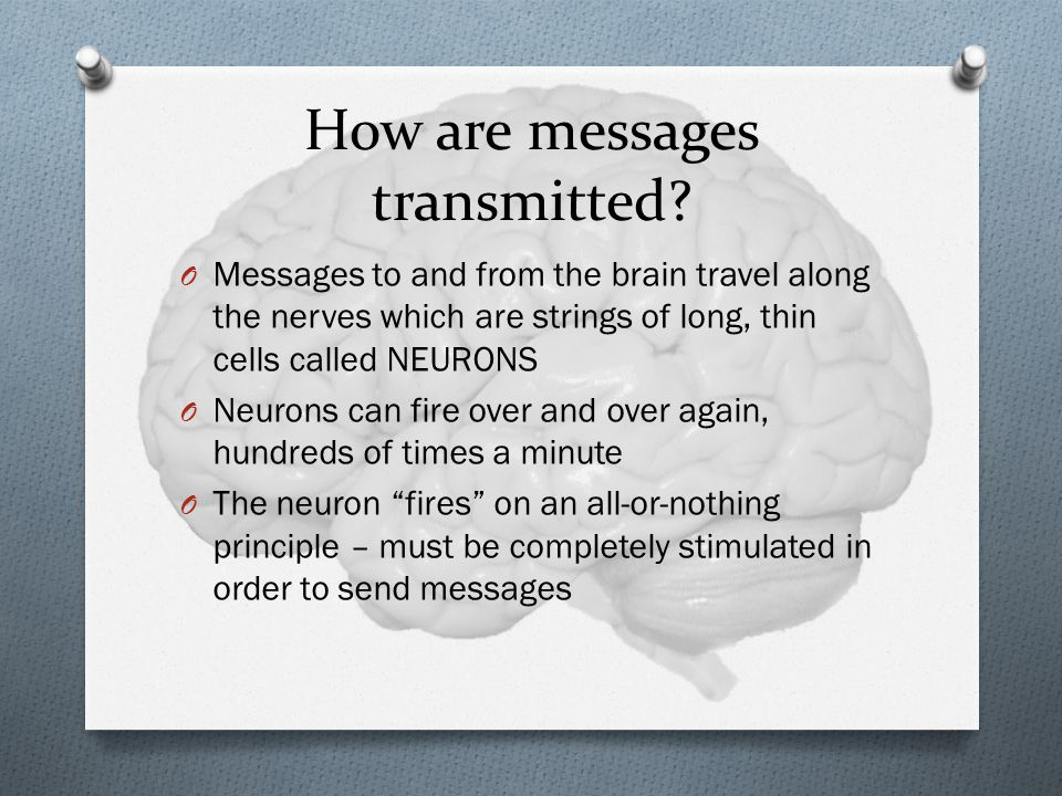 How are messages transmitted.