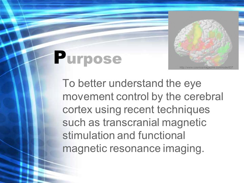P urpose To better understand the eye movement control by the cerebral cortex using recent techniques such as transcranial magnetic stimulation and functional magnetic resonance imaging.