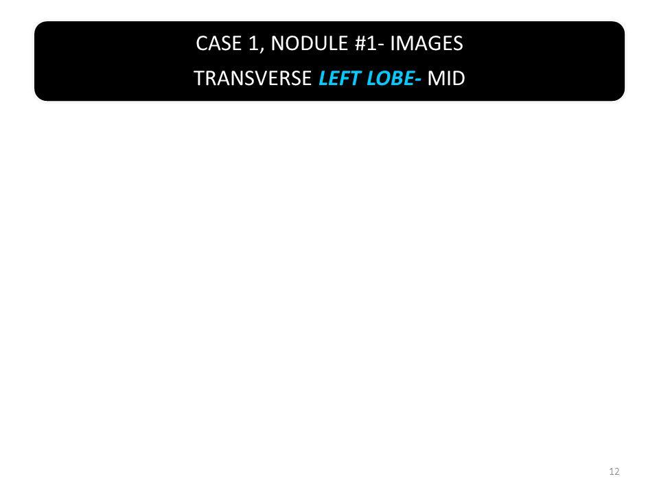 CASE 1, NODULE #1- IMAGES TRANSVERSE LEFT LOBE- MID 12