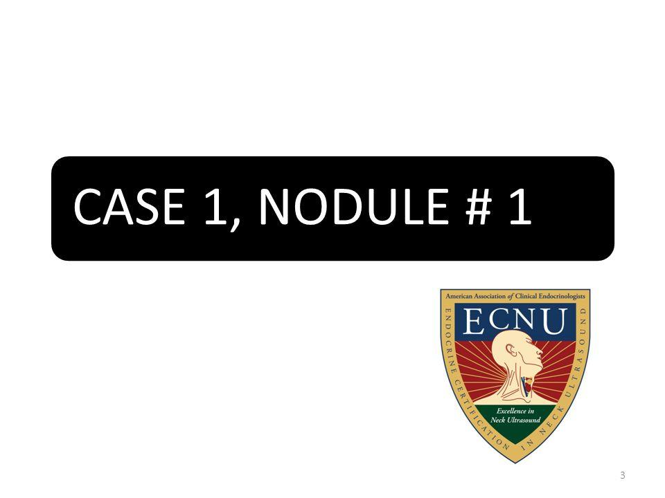 CASE 1, NODULE # 1 3
