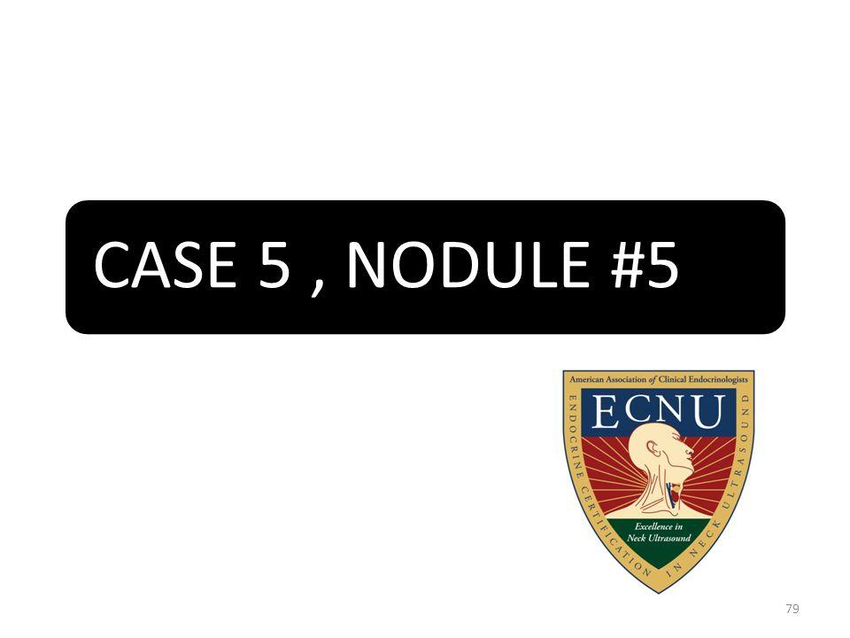 CASE 5, NODULE #5 79