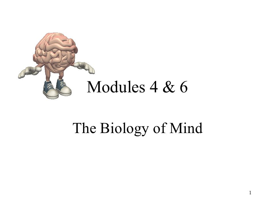 Modules 4 & 6 The Biology of Mind 1