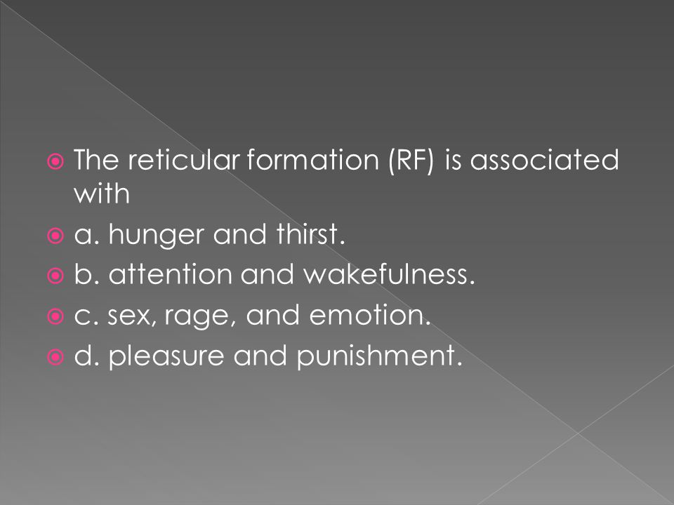  The reticular formation (RF) is associated with  a. hunger and thirst.  b. attention and wakefulness.  c. sex, rage, and emotion.  d. pleasure a