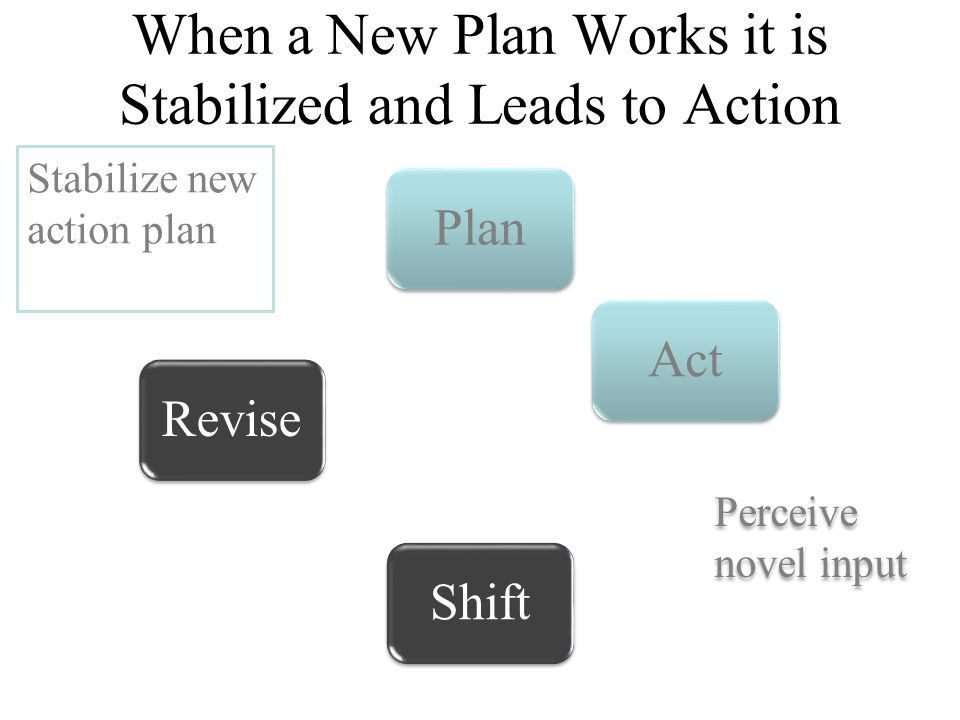 Perceive novel input Stabilize new action plan When a New Plan Works it is Stabilized and Leads to Action