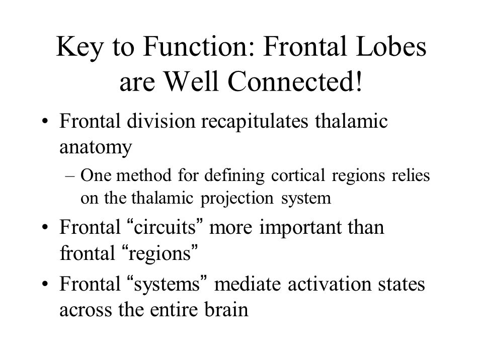 Key to Function: Frontal Lobes are Well Connected! Frontal division recapitulates thalamic anatomy –One method for defining cortical regions relies on