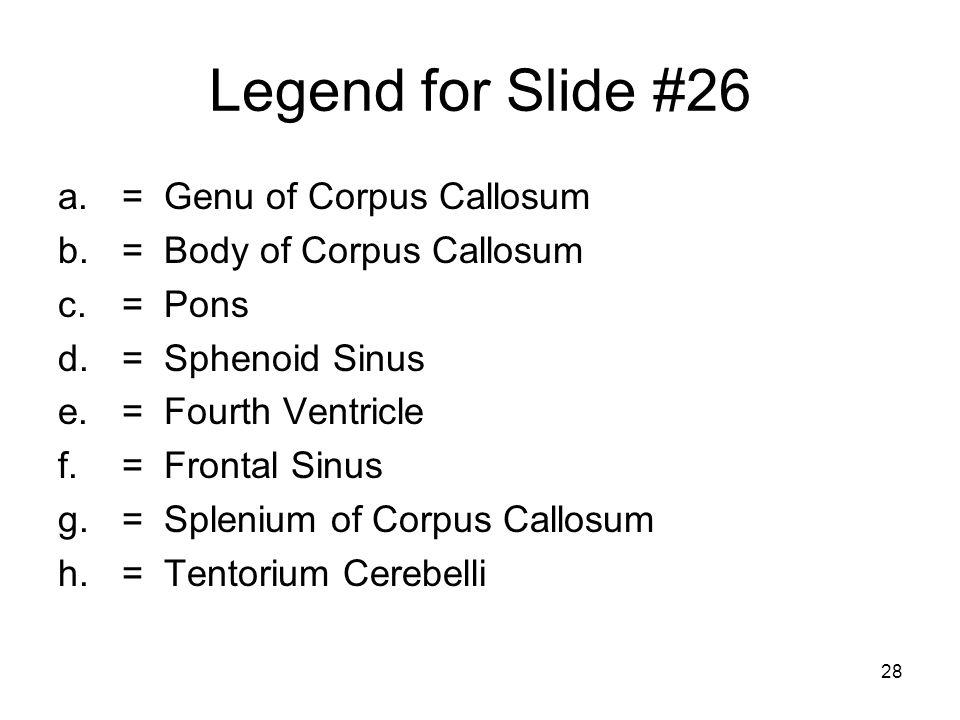 28 Legend for Slide #26 a.= Genu of Corpus Callosum b.= Body of Corpus Callosum c.= Pons d.= Sphenoid Sinus e.= Fourth Ventricle f.= Frontal Sinus g.= Splenium of Corpus Callosum h.= Tentorium Cerebelli