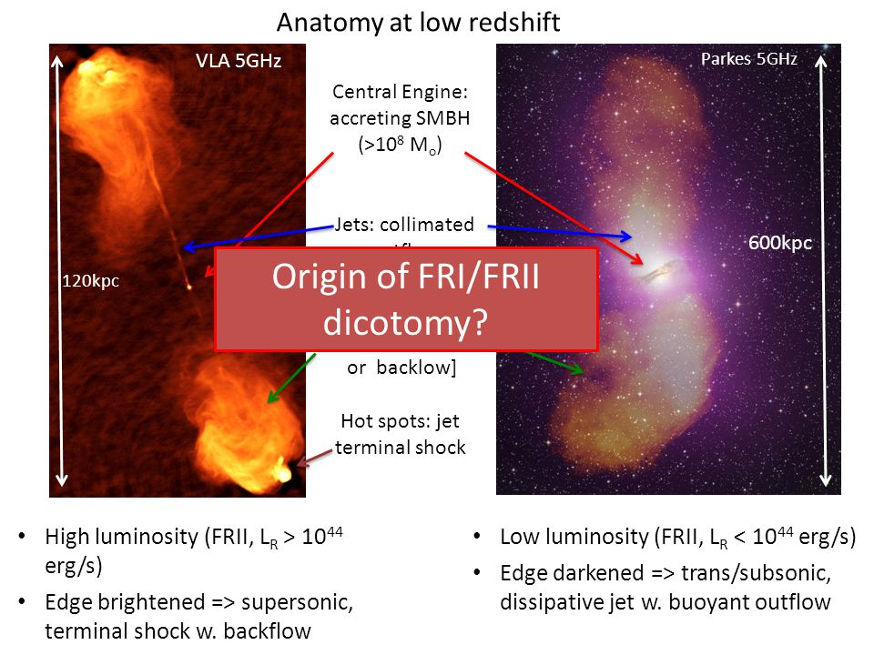 Latest anatomical part: Molecular gas = fuel for star formation CO1-0 in Spider Web => 10 10 M o in molecular gas Distributed over 60kpc Velocity gradient: rotation or interaction.