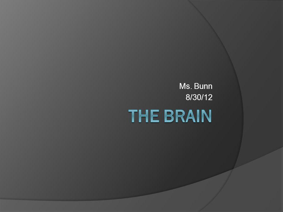 Ms. Bunn 8/30/12