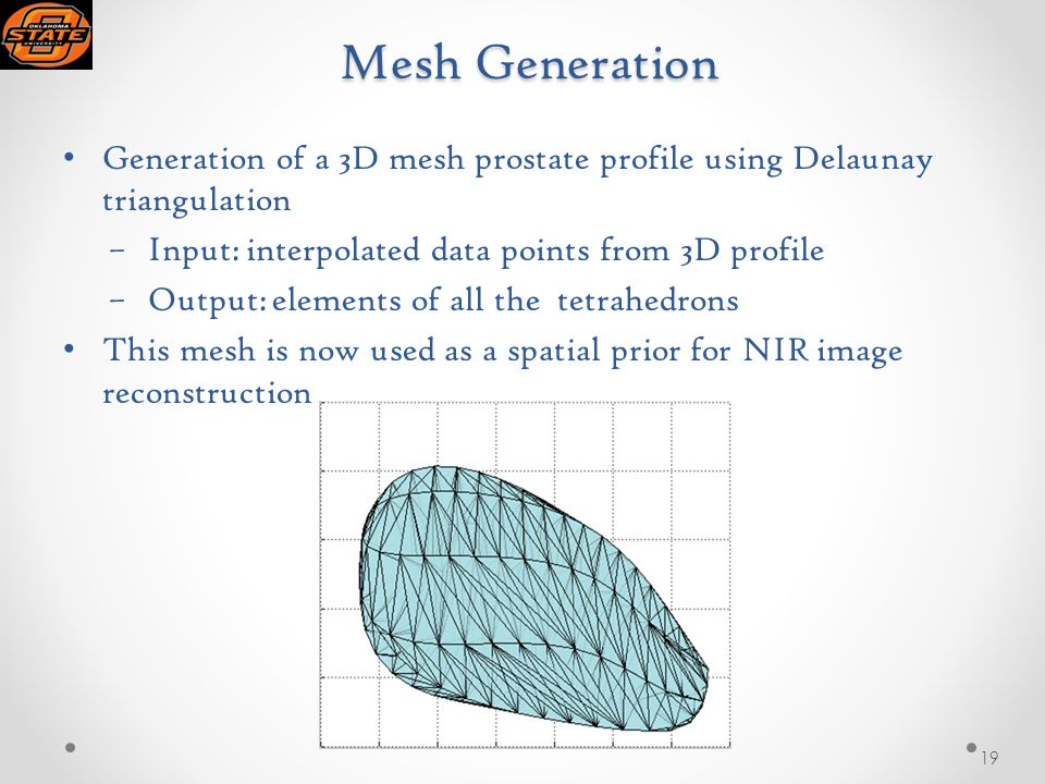 Mesh Generation Mesh Generation Generation of a 3D mesh prostate profile using Delaunay triangulation –Input: interpolated data points from 3D profile –Output: elements of all the tetrahedrons This mesh is now used as a spatial prior for NIR image reconstruction 19