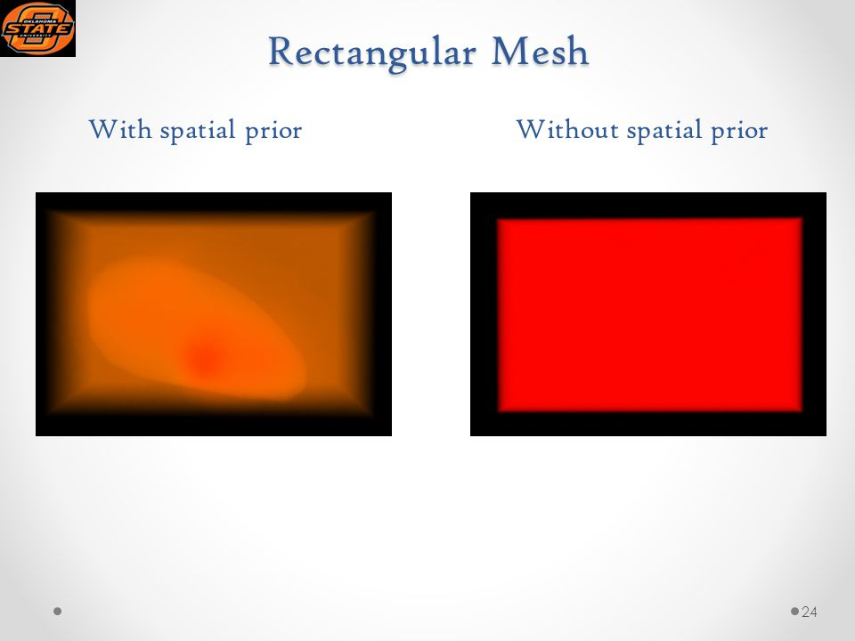 Rectangular Mesh With spatial priorWithout spatial prior 24
