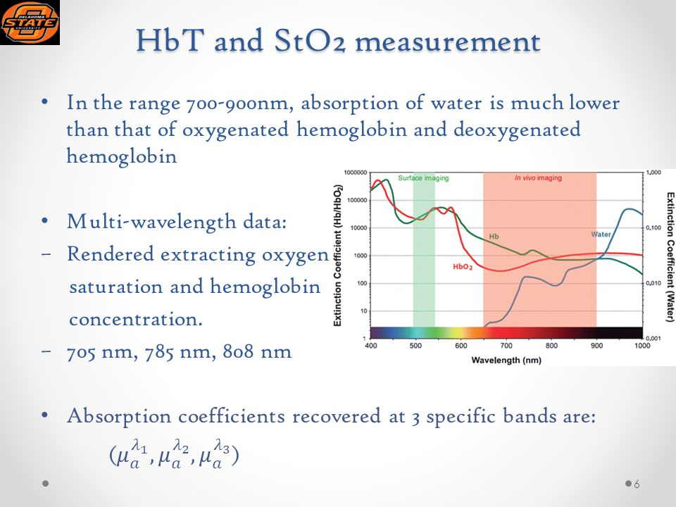 HbT and StO2 measurement 6