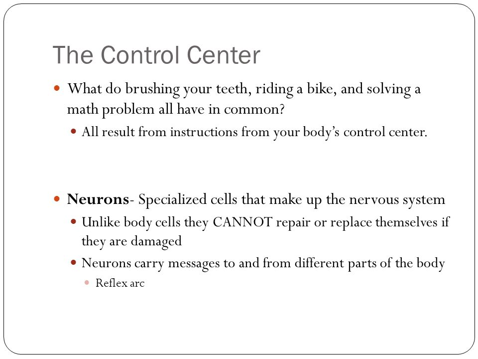 The Control Center What do brushing your teeth, riding a bike, and solving a math problem all have in common.