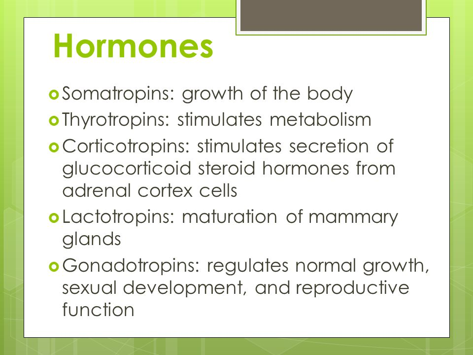 Hormones  Somatropins: growth of the body  Thyrotropins: stimulates metabolism  Corticotropins: stimulates secretion of glucocorticoid steroid hormones from adrenal cortex cells  Lactotropins: maturation of mammary glands  Gonadotropins: regulates normal growth, sexual development, and reproductive function
