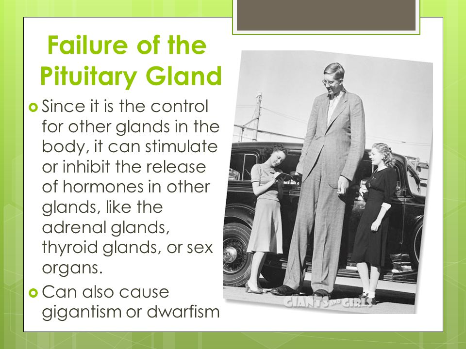 Corrections of the Pituitary Gland  Depending on the cause there are many different treatments.