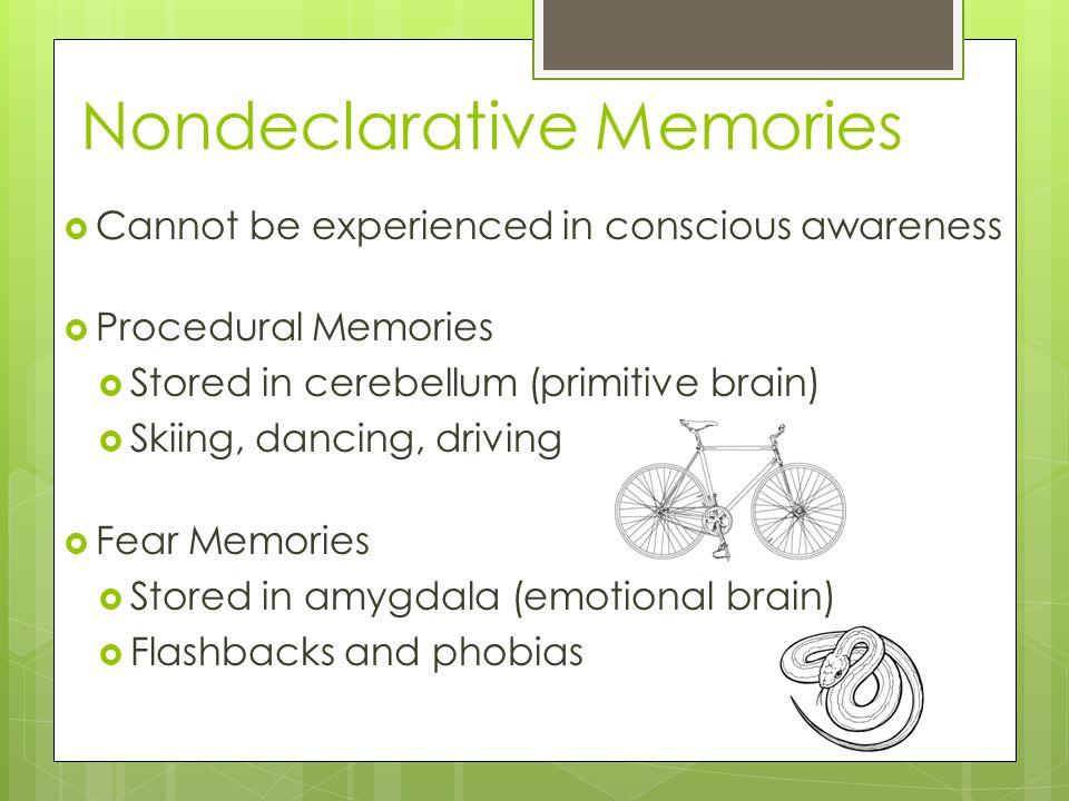Nondeclarative Memories  Cannot be experienced in conscious awareness  Procedural Memories  Stored in cerebellum (primitive brain)  Skiing, dancing, driving  Fear Memories  Stored in amygdala (emotional brain)  Flashbacks and phobias