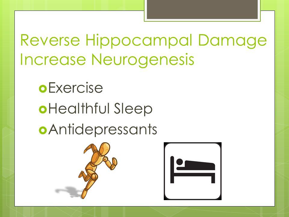 Reverse Hippocampal Damage Increase Neurogenesis  Exercise  Healthful Sleep  Antidepressants