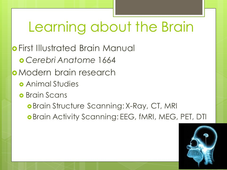 Learning about the Brain  First Illustrated Brain Manual  Cerebri Anatome 1664  Modern brain research  Animal Studies  Brain Scans  Brain Structure Scanning: X-Ray, CT, MRI  Brain Activity Scanning: EEG, fMRI, MEG, PET, DTI