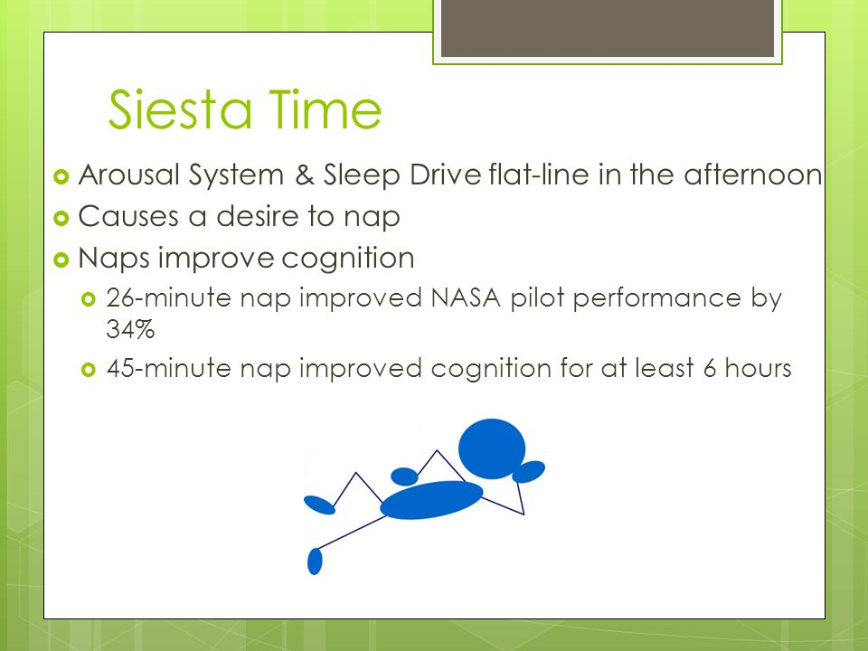 Siesta Time  Arousal System & Sleep Drive flat-line in the afternoon  Causes a desire to nap  Naps improve cognition  26-minute nap improved NASA pilot performance by 34%  45-minute nap improved cognition for at least 6 hours