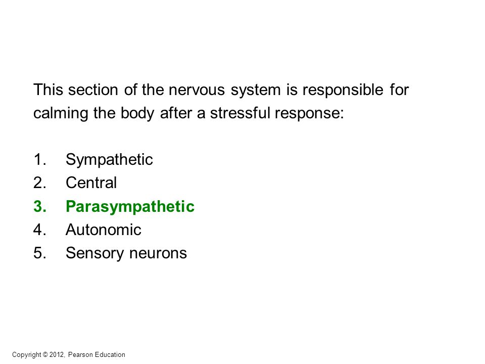 This section of the nervous system is responsible for calming the body after a stressful response: 1.Sympathetic 2.Central 3.Parasympathetic 4.Autonom