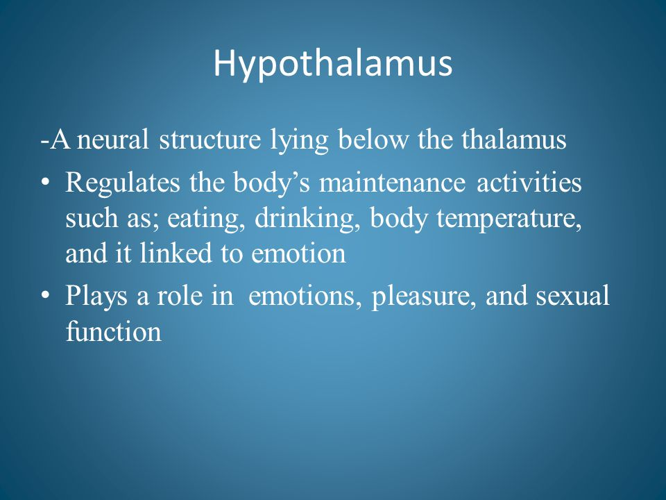 Hypothalamus -A neural structure lying below the thalamus Regulates the body's maintenance activities such as; eating, drinking, body temperature, and